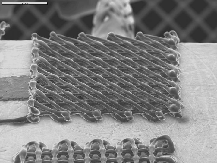 3-D Printing and Nanotechnology, a Mighty Alliance to Detect Toxic Liquids