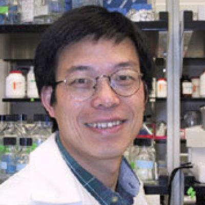 Yi Zhang, University of North Carolina at Chapel Hill