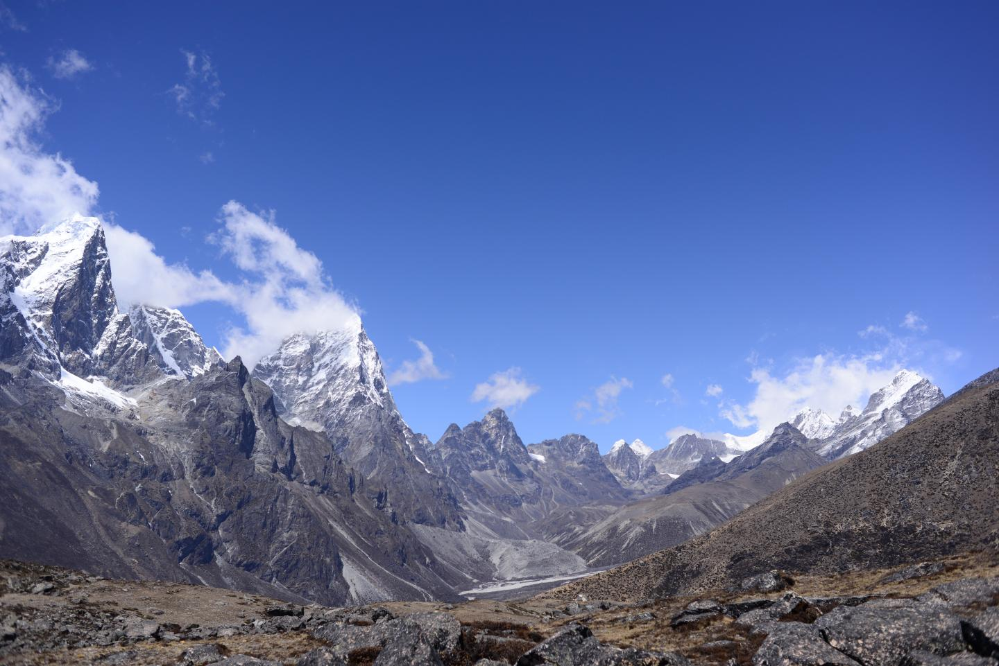 Subnival Vegetation in the Himalayan Region (1 of 3)