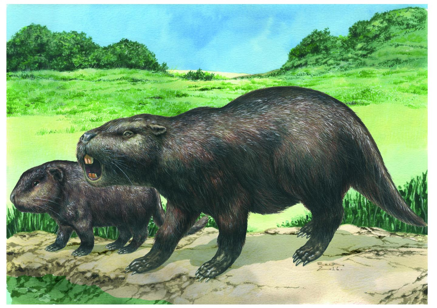An Artist's Impression of the Giant Rodent