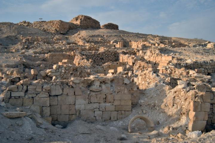 Trash heaps in Israel reveal agricultural shifts during the Roman Imperial Period