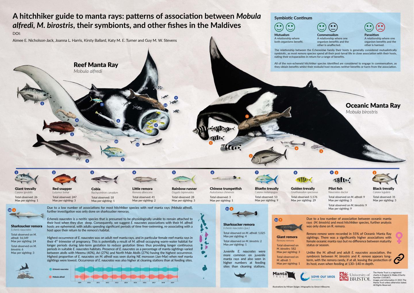 A Hitchhiker's Guide to Manta Rays