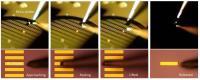 Metal Electrode Transfer Process