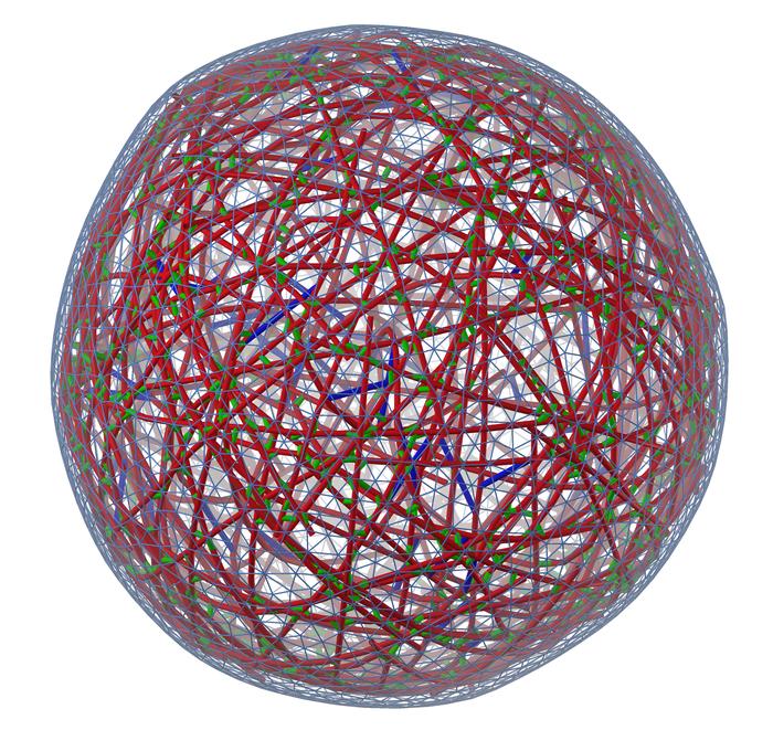 Cytoskeleton and membrane