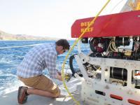 Soft Grippers for Undersea Specimen Gathering