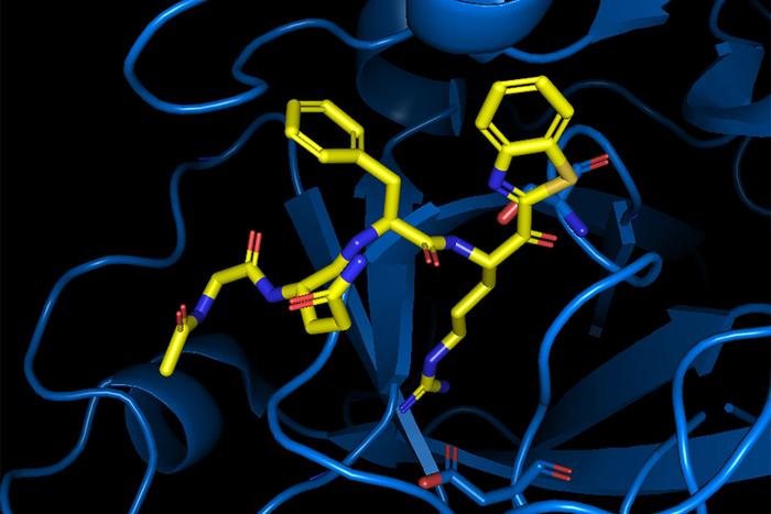 Antiviral compound blocks SARS-CoV-2 from entering cells