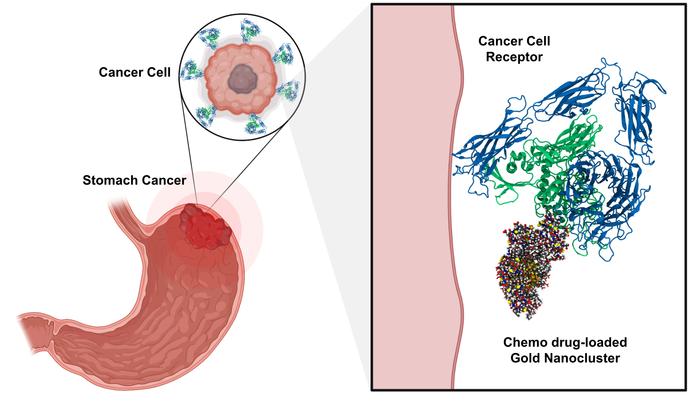 Targeted and chemo drug-loaded gold nanoclusters
