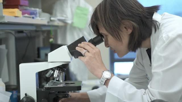 Triple Negative Breast Cancer Discovery