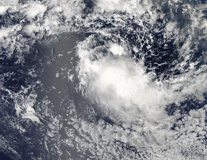Aqua Image of Bakung