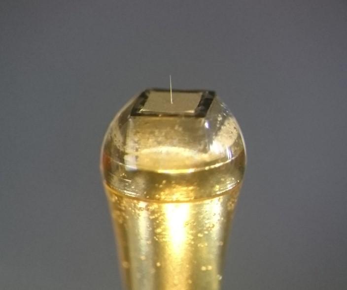 Extracellular Needle-Electrode