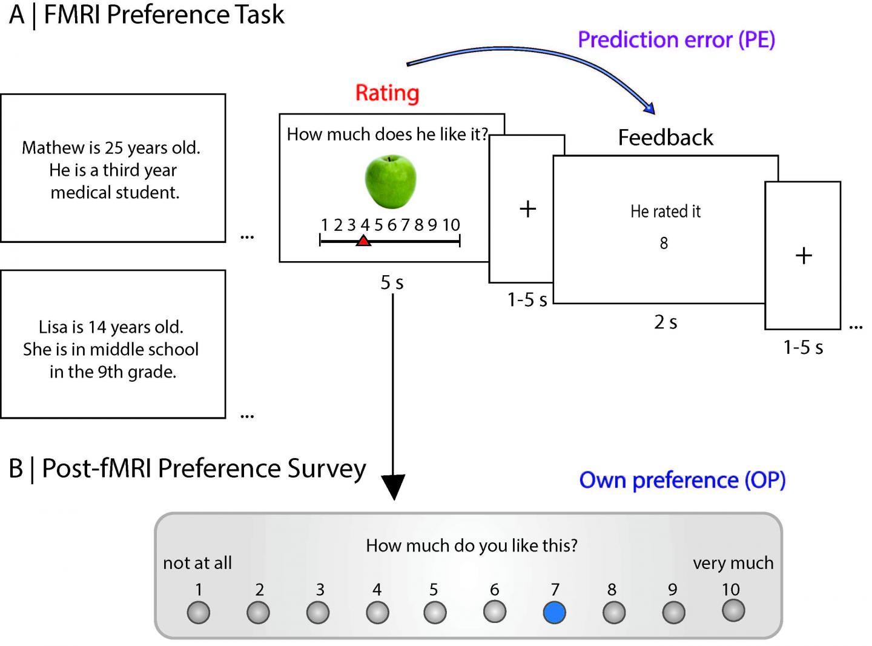 Preference Task