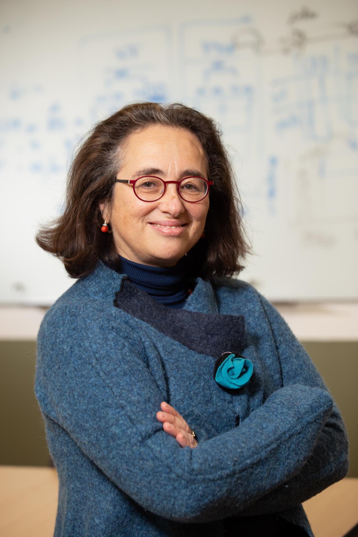 CZI Imaging Scientist Caterina Strambio De Castillia