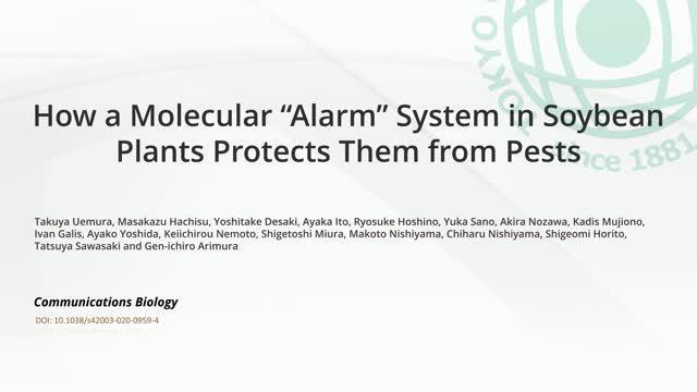 Molecular Alarm System in Plants