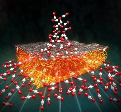 Gas Diffusion Electrode
