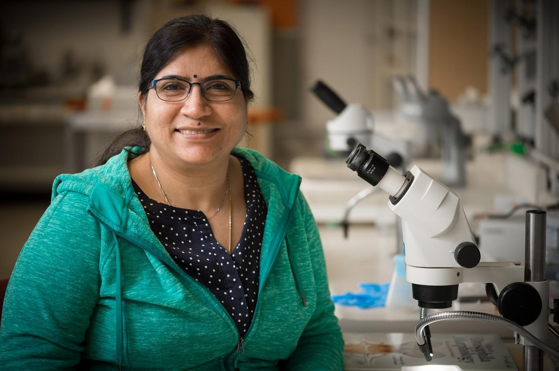 Sandhya Payankaulam, Michigan State University