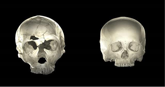 Neandertal -- Modern Human Rotation Together