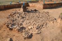 Archaeological Dig in Kazakhstan