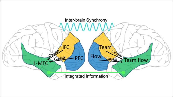 The Unique Brain State of Team Flow