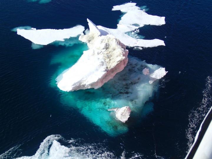 Arctic Continental Shelf Has Big Impact for World's Nitrogen Needs