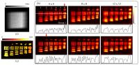 Light-field Imaging With Different Angular Samplings