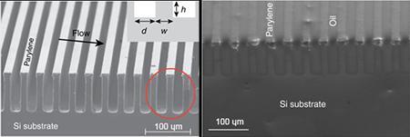 SEM Images of the Super-Hydrophobic Surface