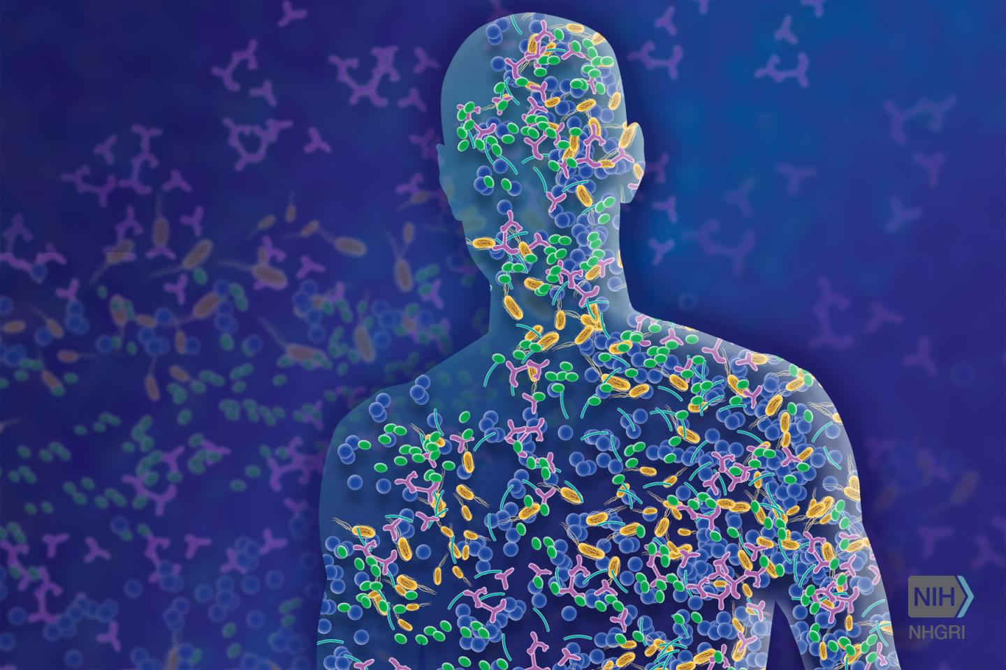 The microbiome is comprised of microorganisms that live in and on us and contribute to human health and disease.