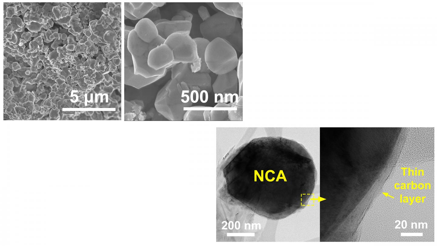 Electron microscopy images