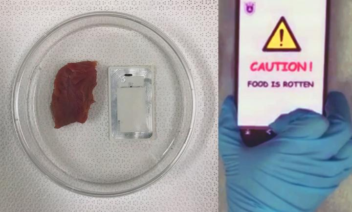 The Ultimate 'Smell Test': Device Sends Rotten Food Warning to Smartphones