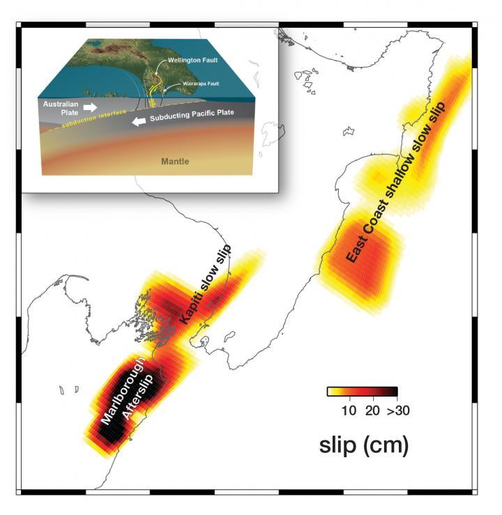 Slow Slip Displacement Map