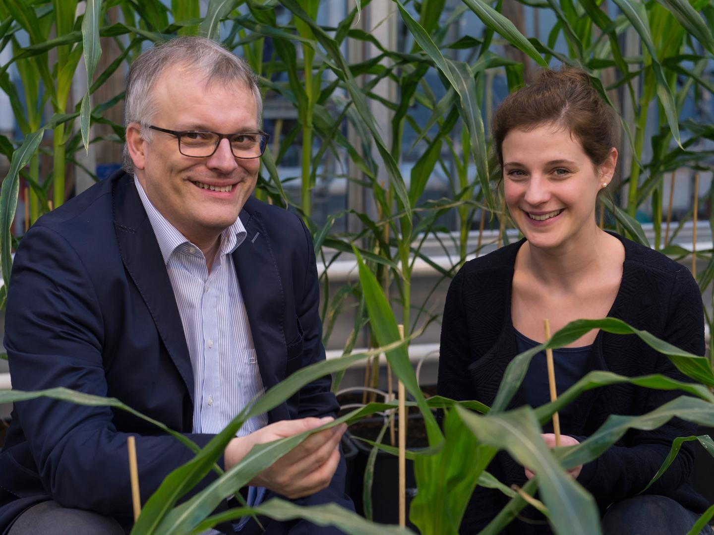 Prof. Dr. Frank Hochholdinger and Jutta Baldauf, University of Bonn