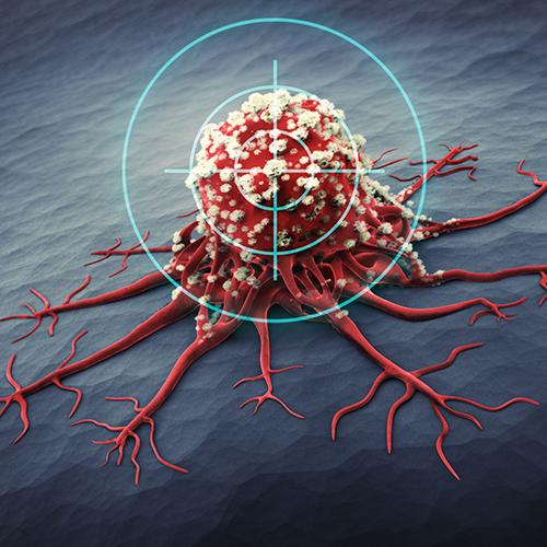 New Approach to Purify Immune Cells
