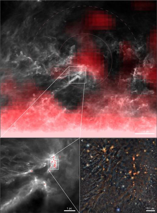 Ophiuchus star-forming region