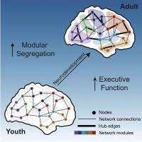 Modular Yet Integrated Brain Networks