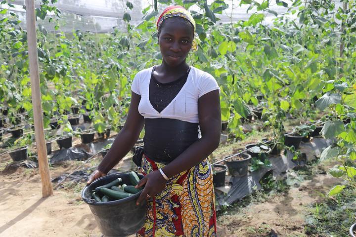 Growing Food for Mali in Mali