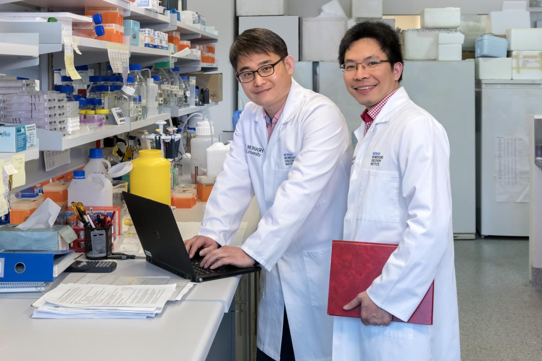 Monash Biomedicine Discovery Institute Researchers