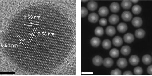 Electron Microscope Images: Nanoparticles Developed at Berkeley Lab