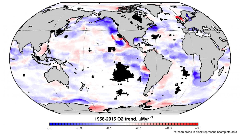 Ocean Oxygen Decline