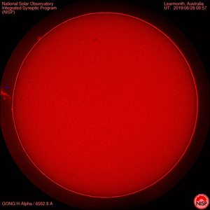 Whole Sun (in red)