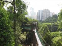 Canopy Walkway at BNFR