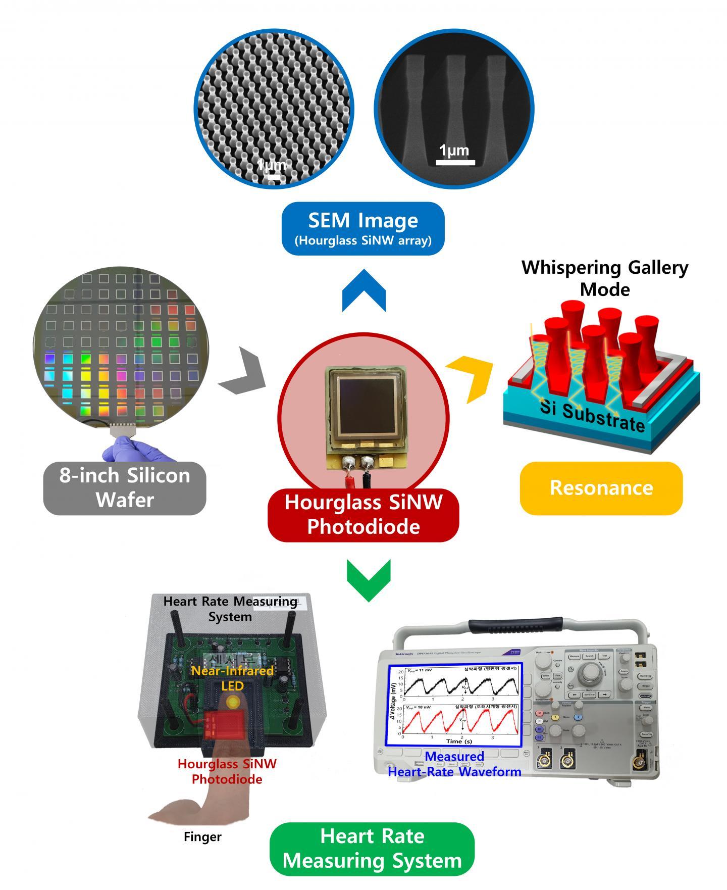 Near-Infrared Photoresponse of Silicon Nanowire Photodiodes (Figure)