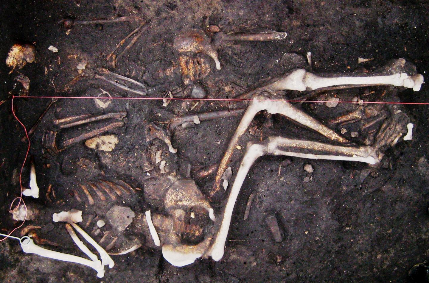 Plague May Have Persisted in Europe During 300-Year Period, Including