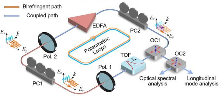 Schematic Diagram of the Proposed Polarimetric PT-Symmetric Photonic System