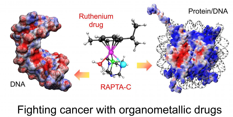 DNA and Drug