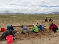 Excavations at the Site of Nwya Devu in Central Tibet, China
