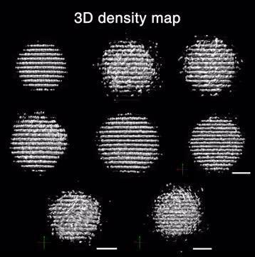 3D Reconstructions of Individual Nanoparticles