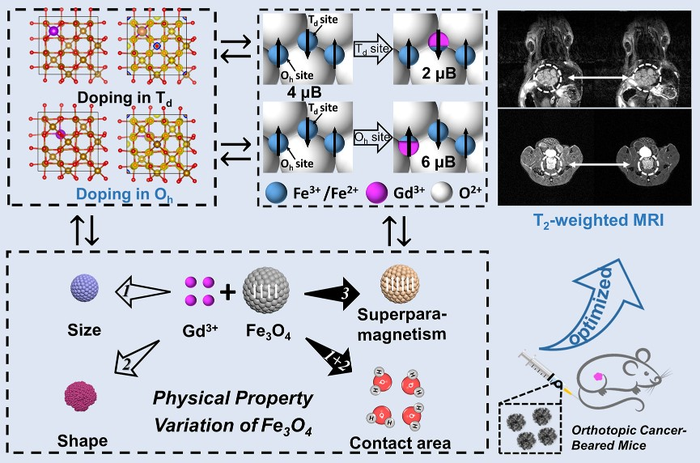 GdxFe3-xO4 Nanoclusters Help Imaging of Early Orthotopic Cancer