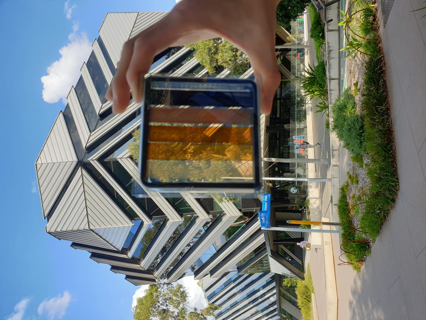 A semi-transparent perovskite solar cell with contrasting levels of light transparency