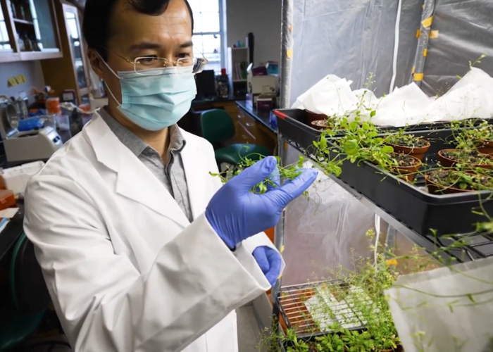Yiping Qi in the lab, University of Maryland