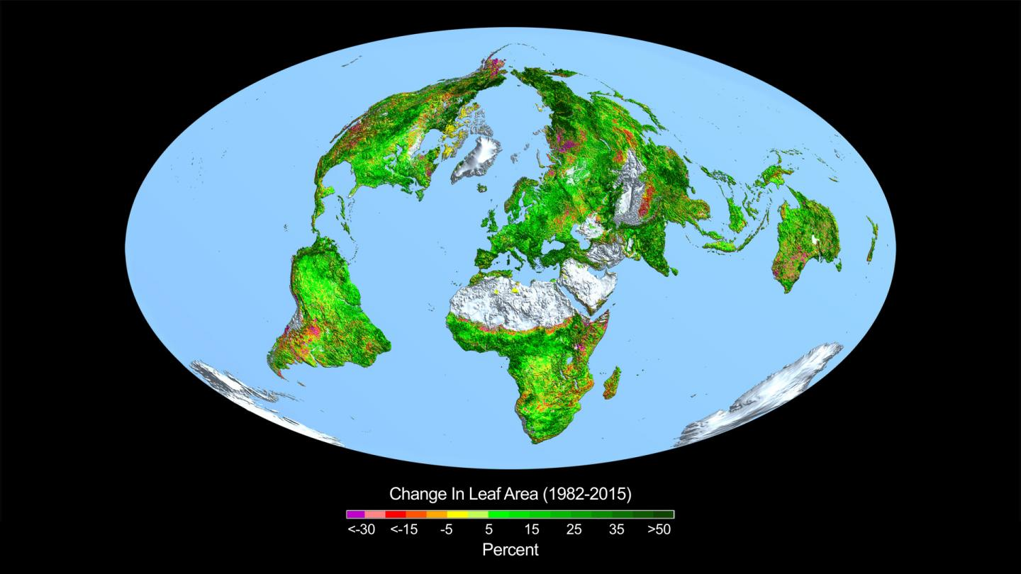 Change in Leaf Area across the Globe from 1982-2015