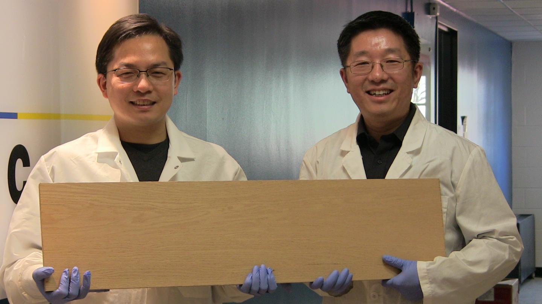 Liangbing Hu and Teng Li, University of Maryland